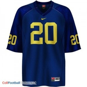 Mike Hart UMich Wolverines #20 - Navy Blue Jersey