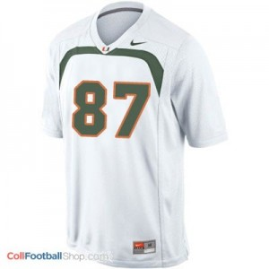 Reggie Wayne Miami Hurricanes #87 Youth - White Jersey